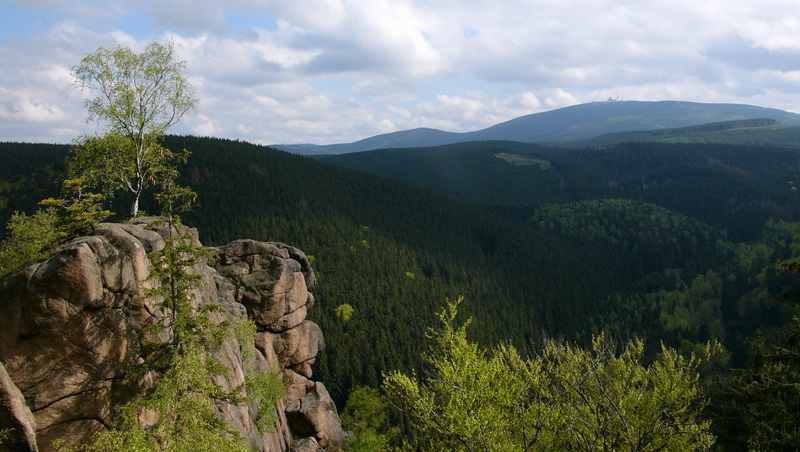 Nationalpark Harz